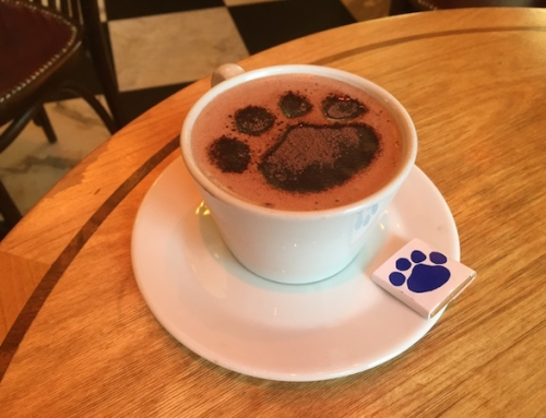 West Village and a Walk on the Wet Side- Hot Chocolate at Café Gitane, New York, USA
