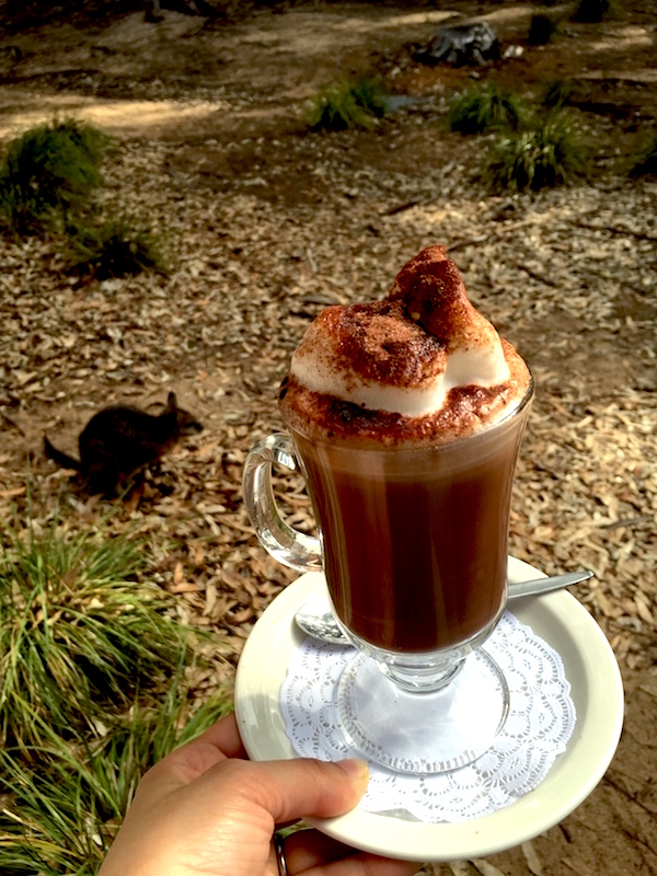 A Hot Chocolate at Flinders Chase Visitor Centre & Café, Kangaroo Island, Australia (3)
